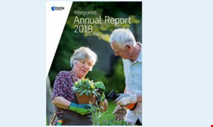 Integrated Annual Report 2019