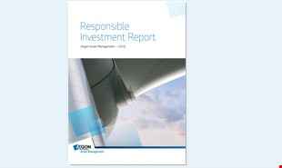 2016 Responsible Investment Report