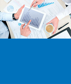Aegon Fact Sheets